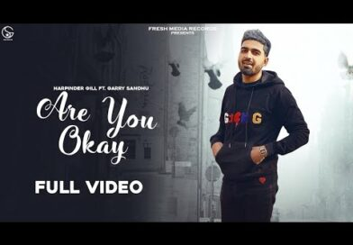 Are You OK – Lyrics Meaning in Hindi – Harpinder Gill ft. Garry Sandhu